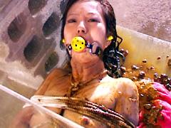 [閲覧注意]スカトロおすすめエロ動画ランキング[浣腸/食糞/盗撮]